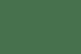 Bushnell Binocular 10x42mm Legend E Series